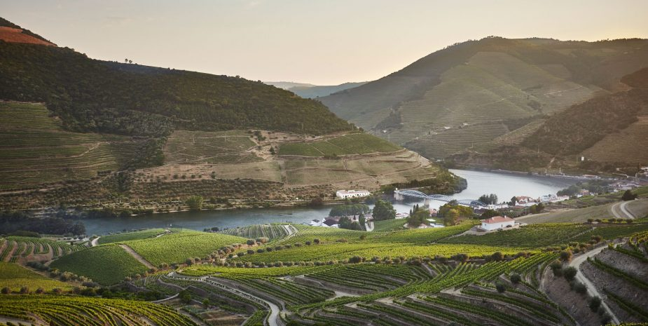 Quinta do Bonfim - Douro